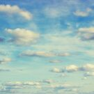 Catch a Cloud by Vicki Field