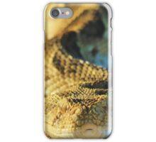 Puff Adder - African Snake Background - Dangerous Beauty iPhone Case/Skin