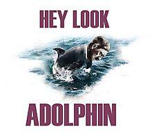 Hey look Adolphin Photographic Print