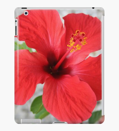 A Stunning Scarlet Hibiscus Tropical Flower iPad Case/Skin