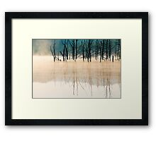 Once Upon a Forest Framed Print