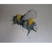 Bee! Photographic Print