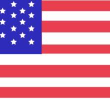 Gary Johnson - Bill Weld 2016 Patriotic Flag Sticker