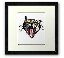 angry kitty Framed Print