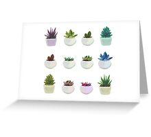 Succulent Garden  Greeting Card