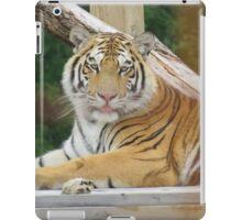 Silly Tiger iPad Case/Skin