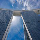Looking Up by Werner Padarin