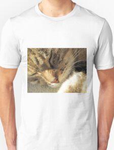 Sleeping Tabby Unisex T-Shirt