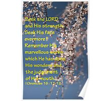 Cherry Blossom, Seek the Lord. Poster