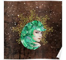 Earth Fairy Poster
