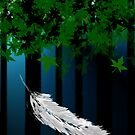 Fall From Grace by Stephanie Rachel Seely
