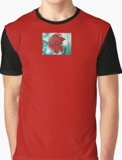 Red in Fury Graphic T-Shirt