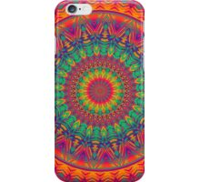 Mandala 87 iPhone Case/Skin