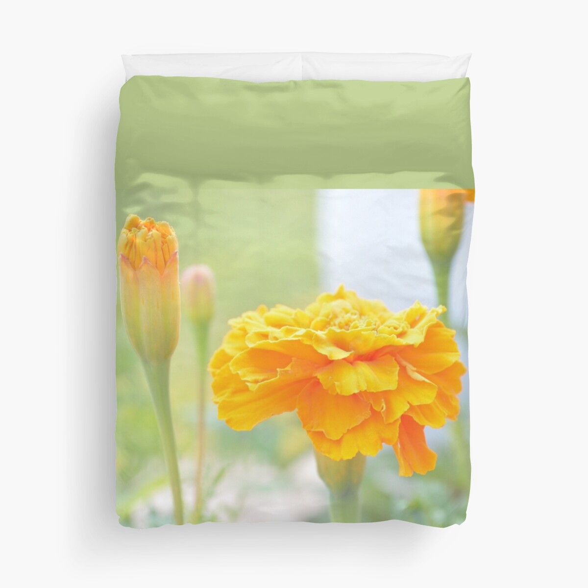 Yellow marigolds by by-jwp