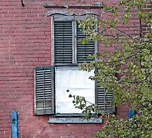 Window with Shutters by Ethna Gillespie