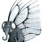 Butterfly by Kaitlin Beckett