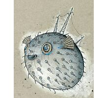 Porcupinefish Photographic Print