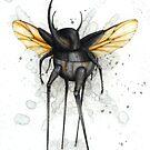 Beetle Walker by Kaitlin Beckett