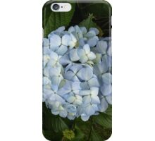 Blue Hydrangea iPhone Case/Skin