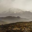 Mt Ruapehu by Werner Padarin