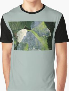 LEAVES IN LIGHT AND SHADOW Graphic T-Shirt