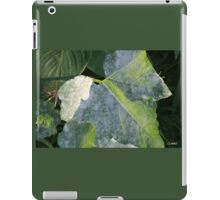 LEAVES IN LIGHT AND SHADOW iPad Case/Skin