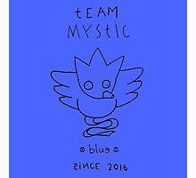 Pokémon GO: Team Mystic (Derpy) Photographic Print