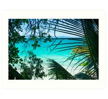 Through The Palms Art Print