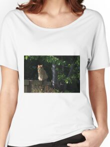 Ginger cat on garden fence Women's Relaxed Fit T-Shirt