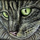 Intense Tabby Cat Pastel Painting by Michelle Wrighton