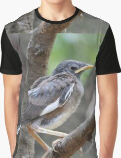 Mynah fledgling Graphic T-Shirt
