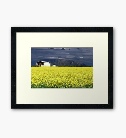 Sunshine After the Storm Framed Print