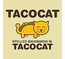 Tacocat Photographic Print