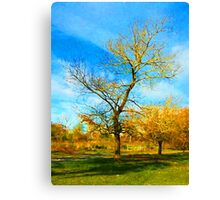 Winter Tree with Golden Branches Canvas Print