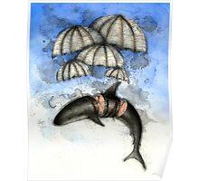 Floating Shark Poster