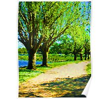 Trees next to the Path Poster