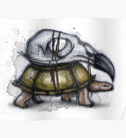Tortoise Exoskeleton Poster