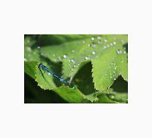 Azure damselfly on leaf after rain Unisex T-Shirt