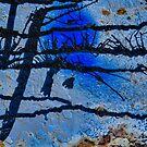 Moonlit by Marilyn Cornwell