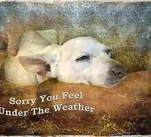 Sorry You Feel Under The Weather by Susan Werby