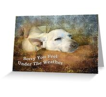 Sorry You Feel Under The Weather Greeting Card