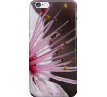 First Blossom iPhone Case/Skin