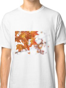 Red maple leaves in autumn Classic T-Shirt