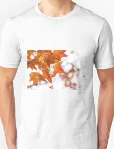 Red maple leaves in autumn T-Shirt