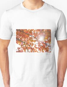 Maple leaves in autumn Unisex T-Shirt