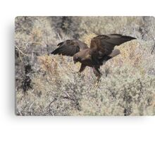 Dancing Eagle Canvas Print