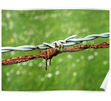 Still Life with Barbed Wire Poster