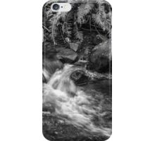 Sequestered iPhone Case/Skin