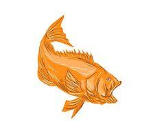 Largemouth Bass Diving Drawing Photographic Print