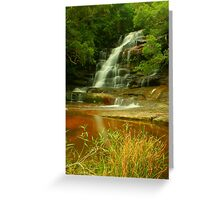 Somersby Falls .. with grass Greeting Card